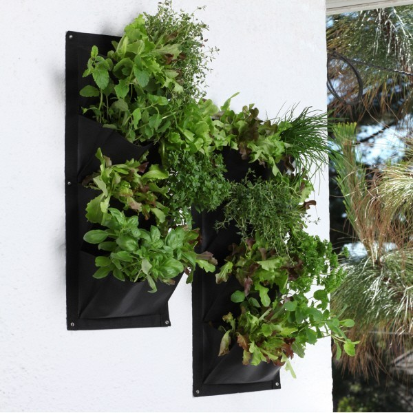 Salad and Herb Vertical Planter Contemporary Outdoor