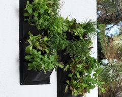 Salad and Herb Vertical Planter contemporary-outdoor-planters