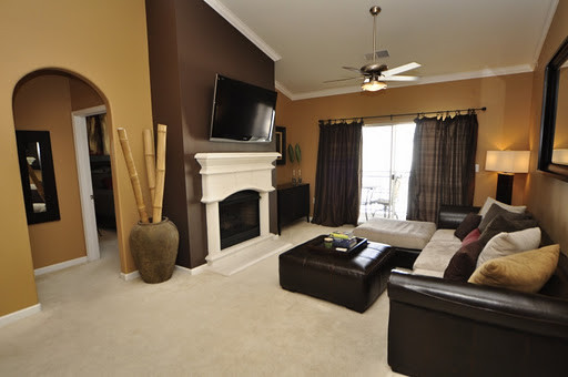 Warm neutral colors for a living room for Warm neutral wall colors