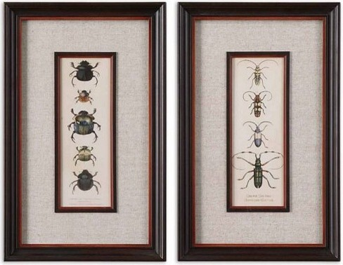 Uttermost Bug Collection I, Ii, S/2 artwork