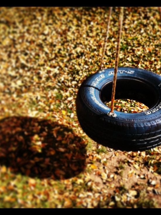 InstaHouzz - A creative take on a children's front yard tire swing during the Fall season.