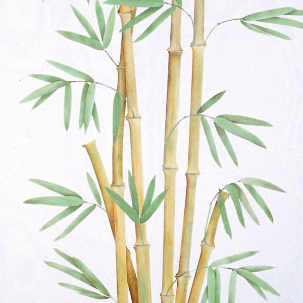 Bamboo Trompe Loeil Wall Stencil Tropical Wall