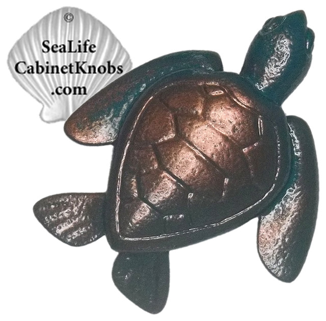 Coastal Cabinet Knobs - Beach Style - orlando - by Sea Life Cabinet Knobs by Peter Costello