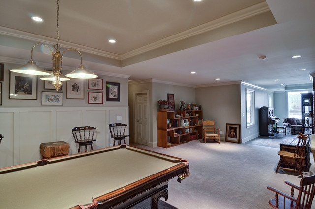 Lake View Whole House Remodel traditional-basement