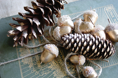 pine cones and acorns dusted with white spraypaint