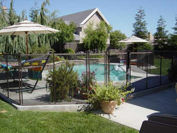 Pool Fence Pictures  swimming pools and spas