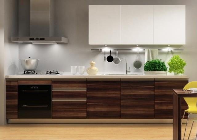 Kitchen cabinets modern-kitchen-cabinetry