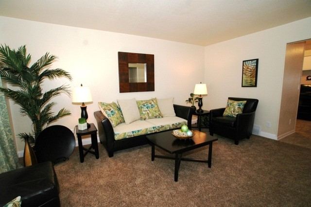 Green Tree Living Room Vacant Stage tropical-living-room