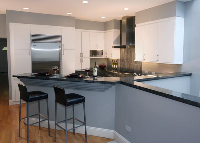 Sleek & Modern Kitchen contemporary-kitchen