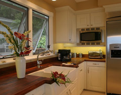 Honolulu White contemporary-kitchen