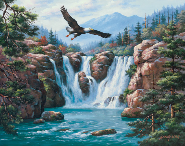 Soaring eagle wall art traditional wallpaper by for Eagle wall mural