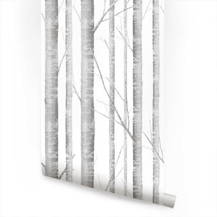 Birch Tree traditional-wallpaper