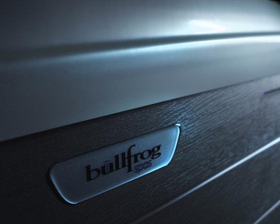Redesign 2013 - Bullfrog Spas -