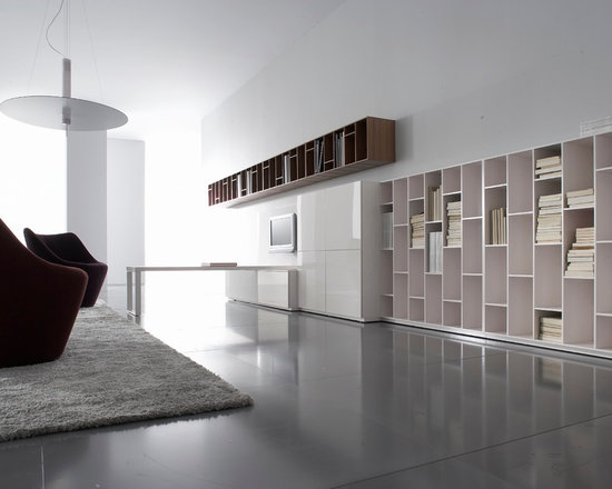 Book & Look - Ligne Roset - Book and Look wall unit, Anda armchairs.