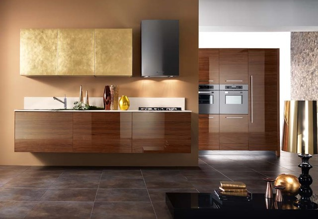 San diego contemporary kitchen design and cabinets - Kitchen design san diego ...