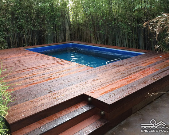 Original Endless Pools® - This backyard Endless Pool® in LA County has a rainforest feel thanks to the sustainable bamboo privacy screen and Brazilian Cherry decking.