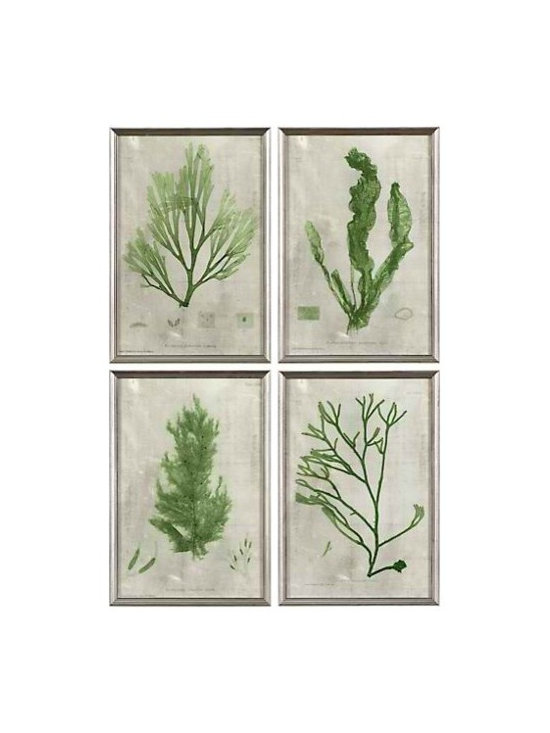 Emerald Seaweed, Set of 4 -
