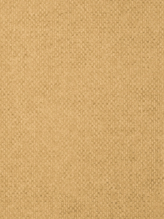 Texture Resource Volume 4 - Flat Shots - Monaco wallpaper in Tobacco (T14169) from Thibaut's Texture Resource Volume 4 Collection