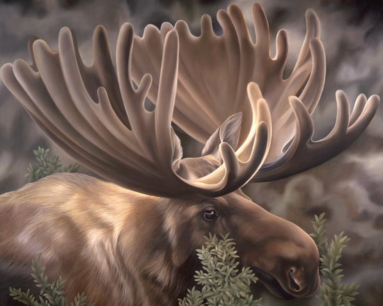 Woodside Moose Portrait - This was a commissioned piece that I created to go over a stone fireplace with wood mantel.  My clients wanted something strong, yet gentle, and they loved the idea of showing the velvety antlers.