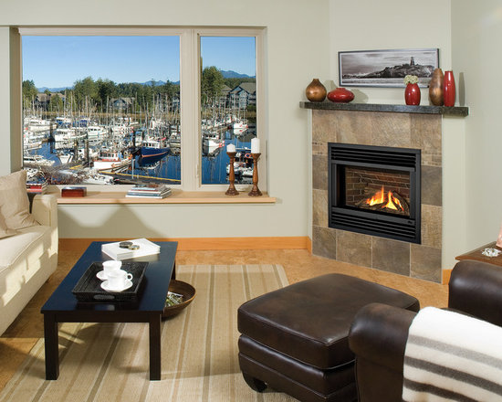 Horizon Series Fireplace - Horizon Contemporary Steel Front (601SFB) with Black Fluted Liner (620FBL).