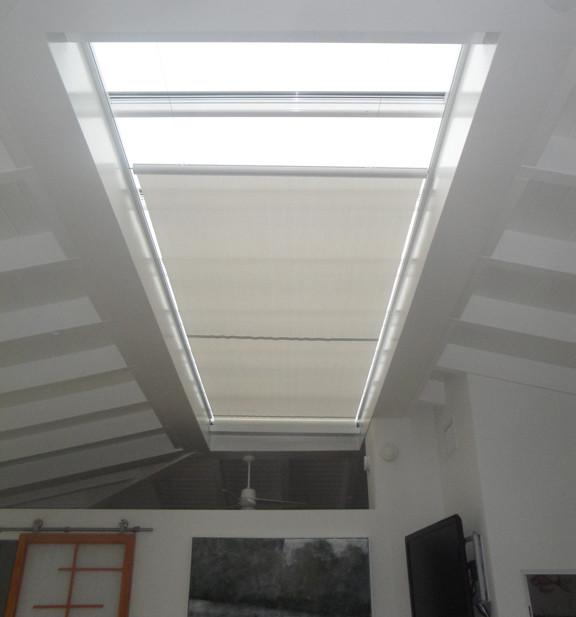 ... Windows & Doors / Window Treatments / Blinds & Shades / Roller Blinds