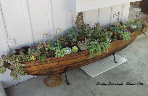 You can make a planter out of just about anything