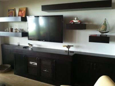Thomas Residence modern-living-room