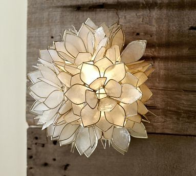 Capiz Flower Sconce traditional-wall-sconces