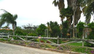 Last of the rockport tours botanical gardens for Landscaping rocks corpus christi