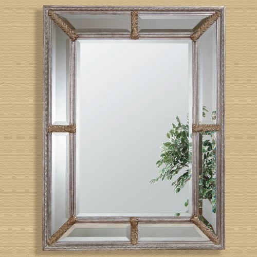 Silver Leaf Double Framed Decorative Mirror - 38W x 49H in. contemporary-mirrors