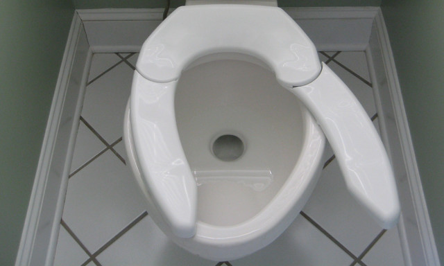 Bariatric aging in place toilet accessories other for Bariatric bathroom design