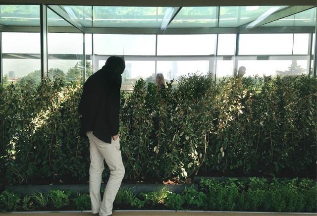Giardino aromatico terrazza triennale contemporary for Giardino triennale