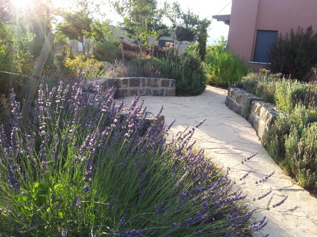 Seating Area Made Off Old Basalt Surrounded Lavender And