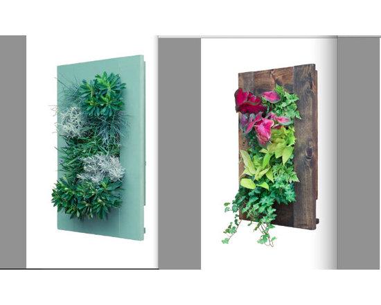 Frame Series -