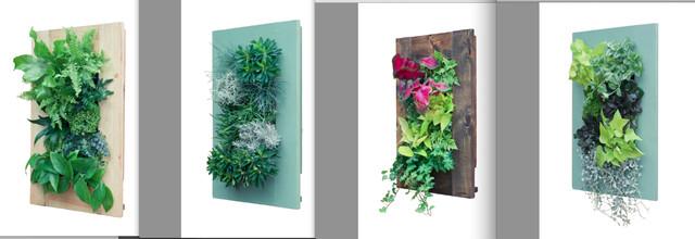 Frame Series contemporary-artwork