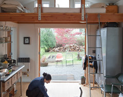 Ira Lippke eclectic-kitchen