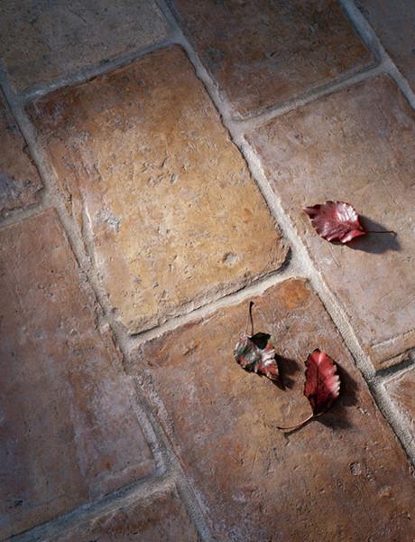 Antique Terra Cotta Floor Tiles mediterranean-wall-and-floor-tile