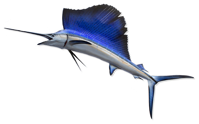 Bayonet Coastal Beach Blue Sailfish Grand Wall Decor - by Karen Robertson beach-style-artwork