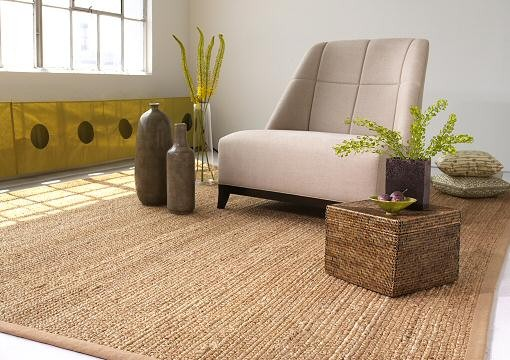 Custom Jute Rug Collection traditional-rugs