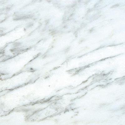 Marble Tile: Greecian White 12 in. x 12 in. Honed Marble Floor & Wall Tile TARAC contemporary-floor-tiles