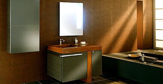 PEDINI ITALIAN MODERN BATHROOM DESIGN IN SAN DIEGO contemporary-bathroom-vanities-and-sink-consoles