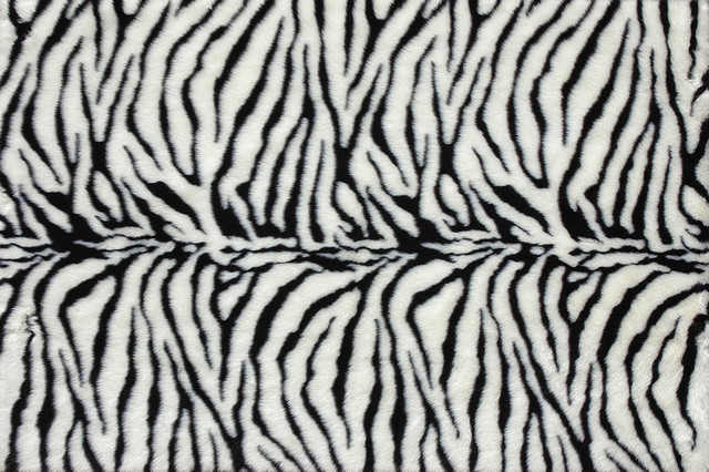 Loloi Danso Collection DANSDA-01ZB003050 Rug contemporary-rugs