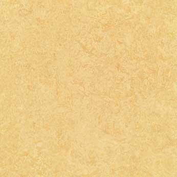 Butter Natural Linoleum Tile contemporary-floor-tiles