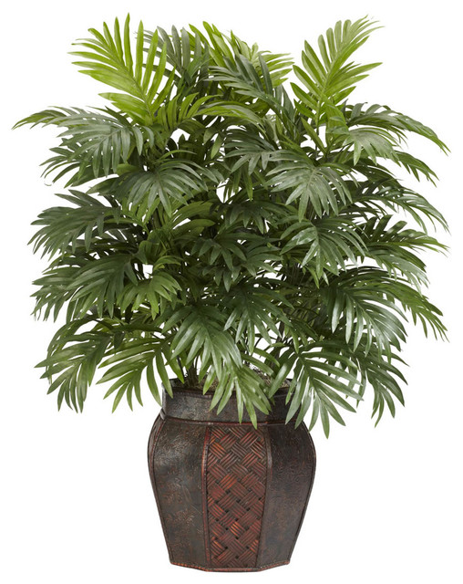 Areca palm with vase silk plant contemporary for Modern indoor plants