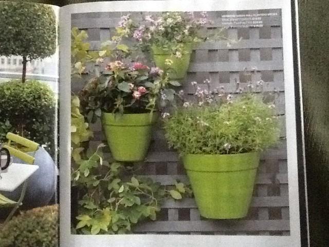 Crate barrel hermione green wall planters - Crate and barrel espana ...