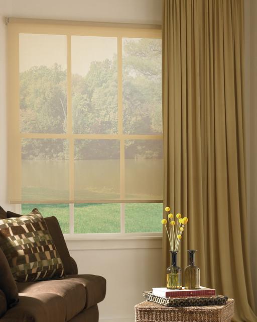 Hunter Douglas Designer Screen Shades and Window Treatments contemporary