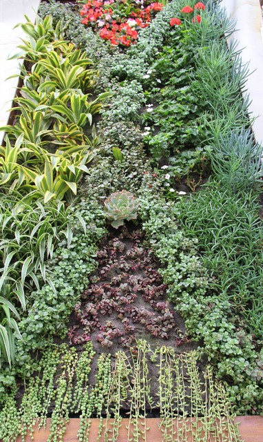 Living Wall System Residential modern-greenhouses