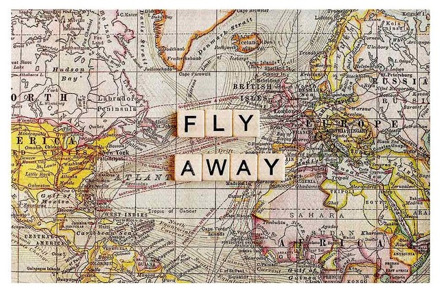 Area Rug by Sylvia Cook - Fly Away I contemporary-kids-rugs