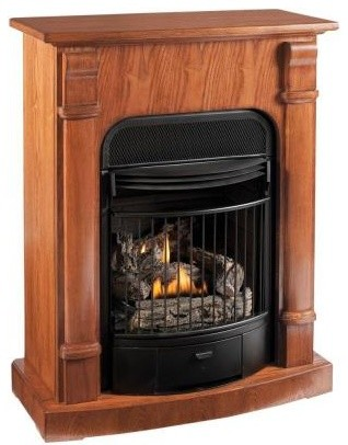 Gas Fireplaces ProCom 29 In Convertible Vent Free Dual