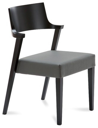 Lirica Chair (Set of 2) modern-chairs
